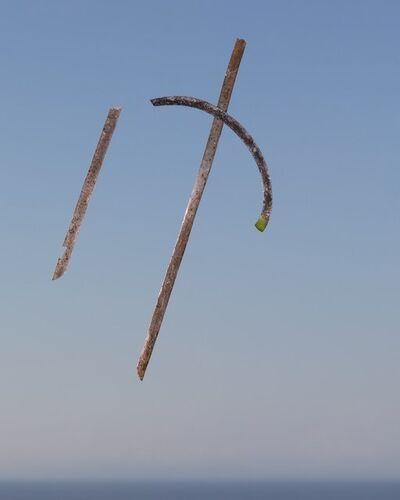 Joe Clark, 'Seagrass #5', 2013