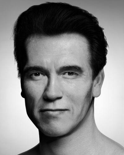 Zhang Wei (b. 1977), 'Arnold Alois Schwarzenegger', 2013