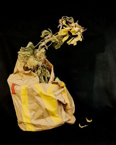 Andrew Nuding, 'Mcdonald's Dead Sunflower', 2018