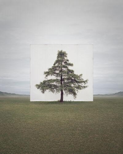 Myoung Ho Lee, 'Tree…#6', 2013