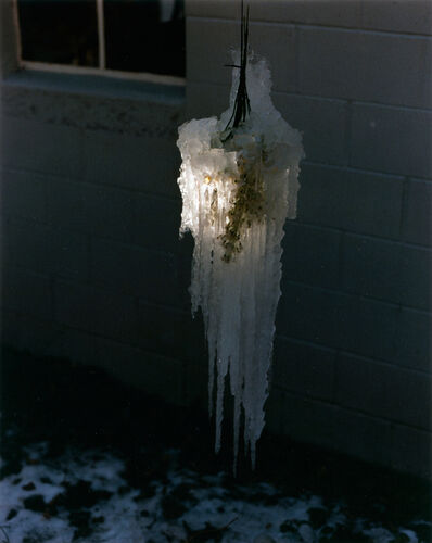 Gregory Halpern and Ahndraya Parlato, 'Untitled, from the series 'East of the Sun, West of the Moon''