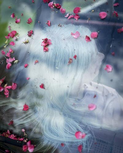 Cig Harvey, 'Maggie & the Rose Hip Petals'