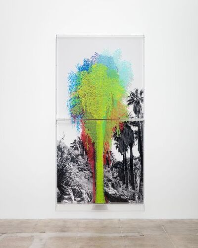 Charles Gaines, 'Numbers and Trees: Palm Canyon, Palm Trees Series 2, Tree #7, Mission', 2019