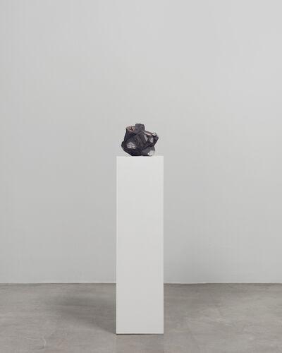 Agnieszka Kurant, 'Post-Fordite 2', 2019
