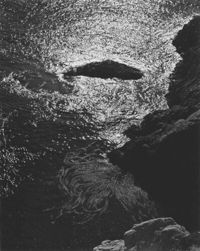 Edward Weston, 'Kelp, China Cove, Point Lobos', 1940-printed 1977