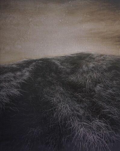 Heng Li, 'The Hill', 2015