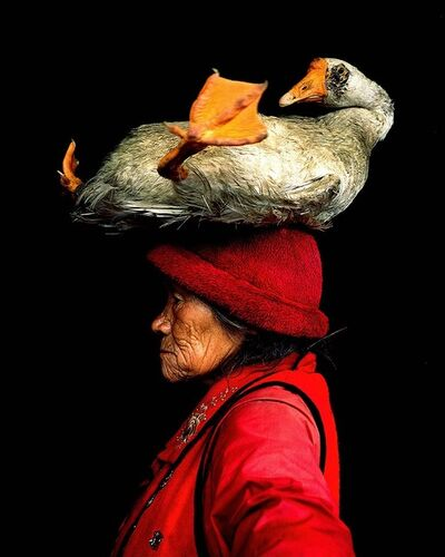 Cristina Mittermeier, 'Lady With The Goose', 2006