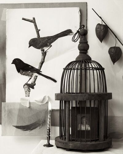 Zoë Zimmerman, 'Two Birds and Cage'