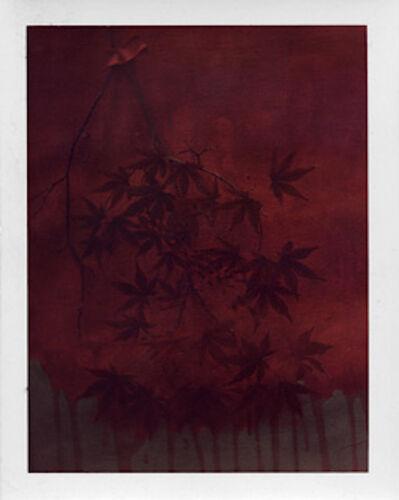 Sarah Moon, 'L'été indién', 2010
