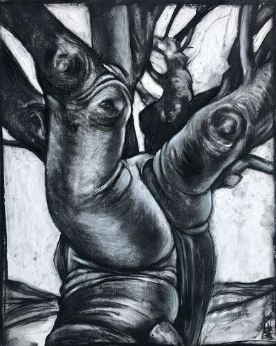Ellen LeBow, 'Ceiba Tree, Vieques', 2019