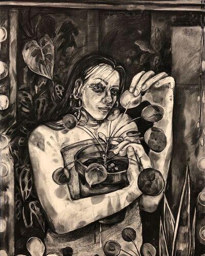 Alina Perez, 'Pilea Kingdom', 2019