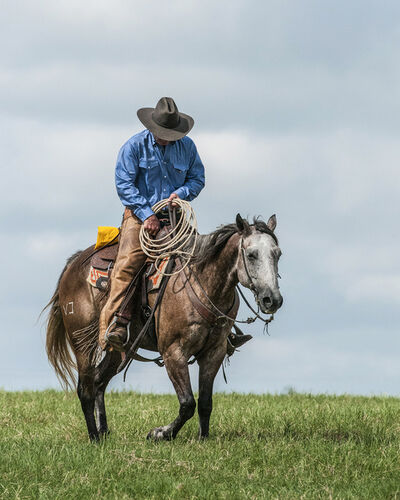 Alan Montgomery, 'Weary Cowboy', NA