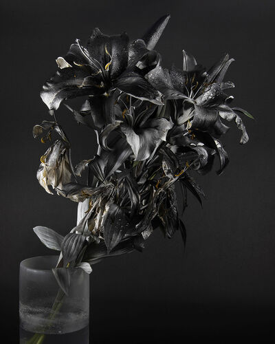 Stephanie Syjuco, 'Blackout (Krylon ColorMaster Gloss Black on White Oriental Lilies Sprayed Gloss White)', 2019