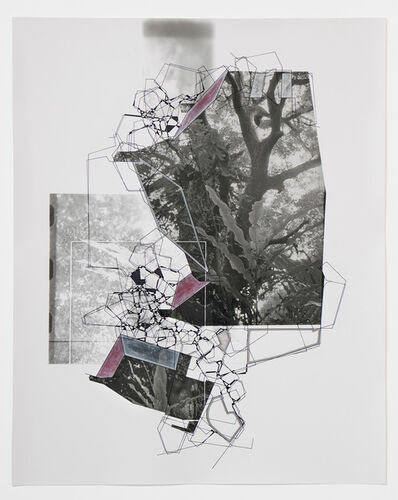 Aki Lumi, 'Architectural Nature No. 11', 2016