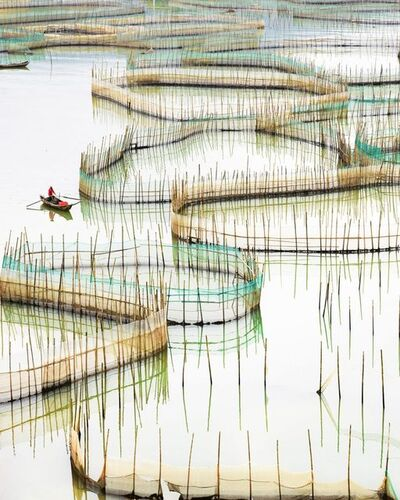 David Burdeny, 'Nets II (vertical), Ningde, Fujian, Peoples Republic of China', 2017