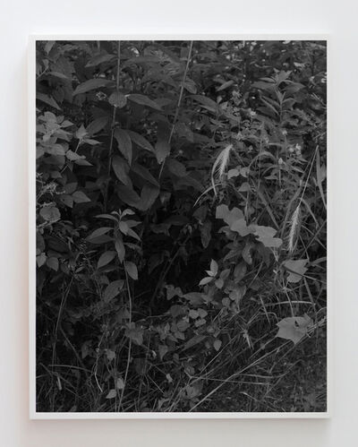 Tealia Ellis Ritter, 'Reenactment 230 (Black)', 2016
