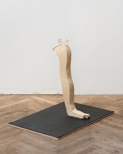 "Nathaniel Cary, '"" Social Climbing "" (arm)', 2019"