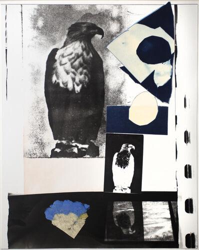 John Wood, 'Eagle Postcard', 1987