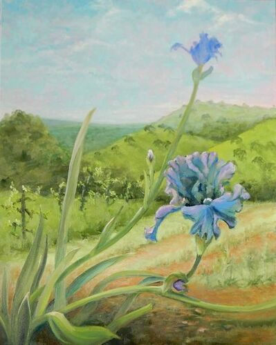 Karen Anable-Nichols, 'Amador Spring'