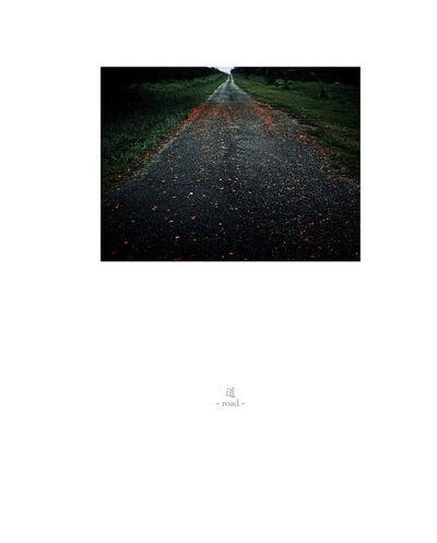 Osamu James Nakagawa, 'road', 2001-2009