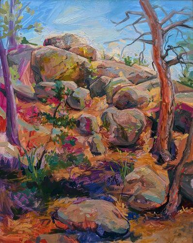 CHARIS J. CARMICHAEL BRAUN, 'Rock Rivulus', 2018
