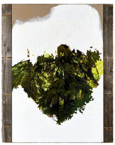 Paul Jacobsen, 'Pine Badge', 2011