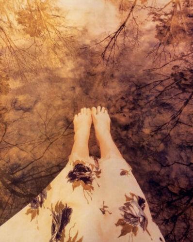 Diana H. Bloomfield, 'Reedy Creek II', 20107