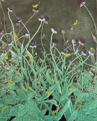 Julia Lucey, 'Grasshoppers', 2020