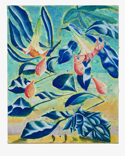 Nicholas William Johnson, 'Antoher Angels Trumpet', 2018