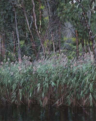 Deborah Poynton, 'River', 2018