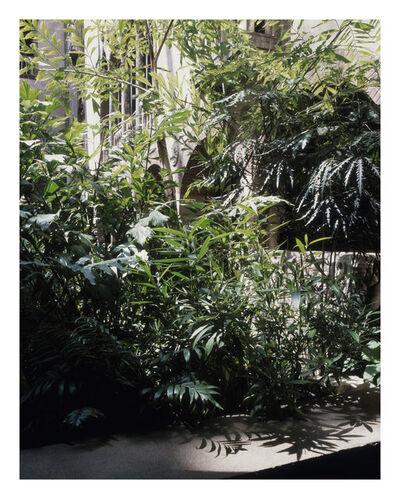 Luisa Lambri, 'Untitled (Isabella Stewart Gardner Museum #24)', 2008