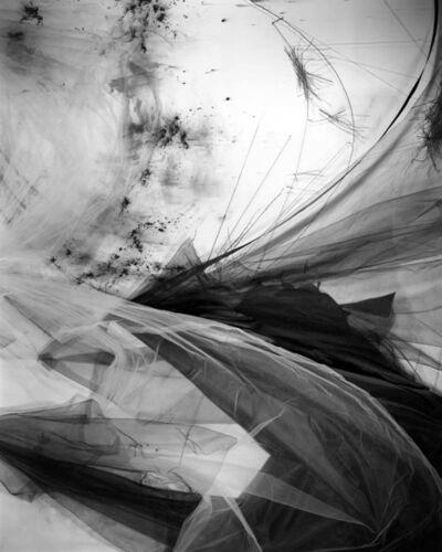 Lauren Semivan, 'Lining 2', 2018