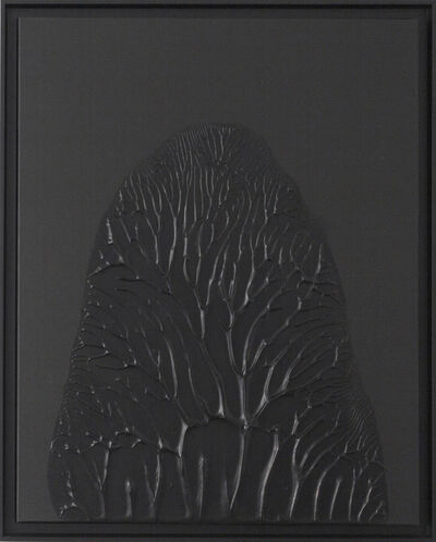 Thomas Tronel-Gauthier, 'Peinture Noire 30F #1', 2014