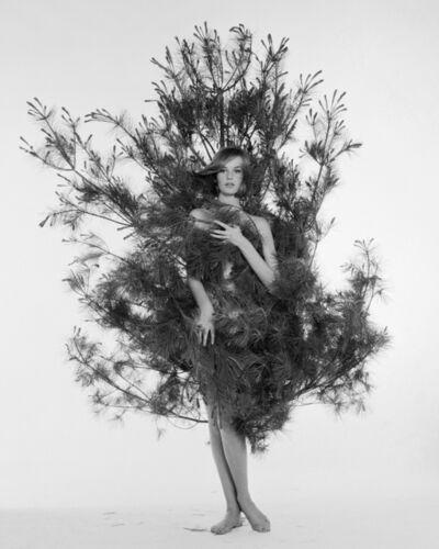 William Helburn, 'Nena in Fir Tree, Nena von Schelbrugge', ca. 1959