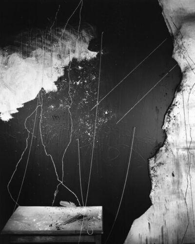 Lauren Semivan, 'Flour Chalk Feathers', 2017