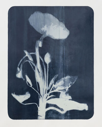 Sanell Aggenbach, 'New Order no.7', 2016