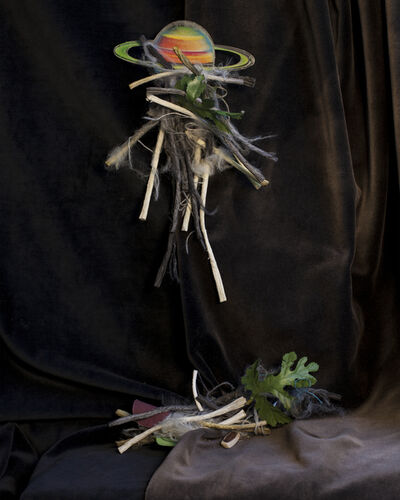 April Hickox, 'Detruse #2 ,Provenance Unknown ', 2019