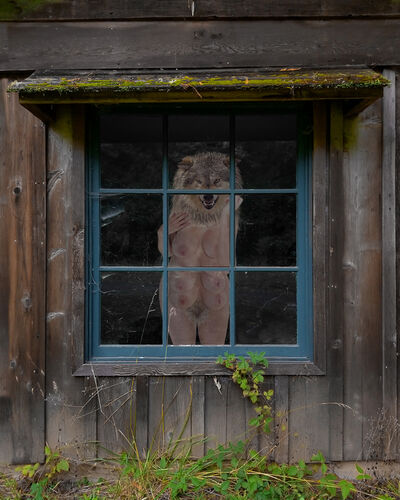 Julia Oldham, 'The Forgotten Cabin'