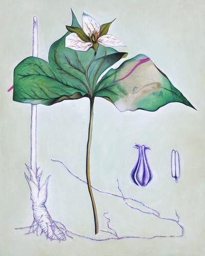 Fiona Ackerman, 'Death Flower Birth Root', 2019