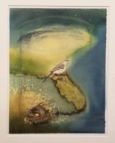 Robin McCloskey, 'Florida #1', 2018