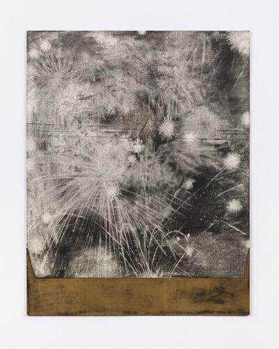Lucas Reiner, 'Fireworks in June #7', 2005