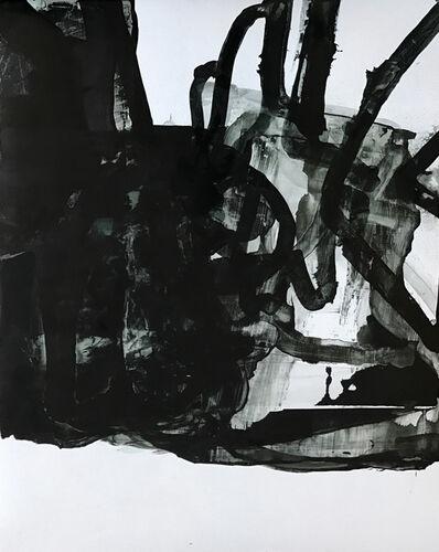 Eric Blum, 'Untitled Nº111616', 2016