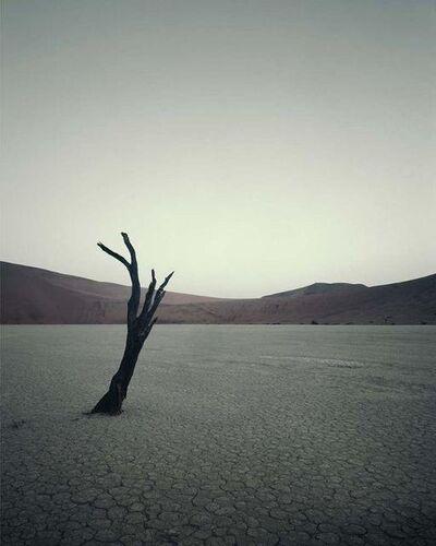 Jimmy Nelson, 'IV 474 - Dead Vlei, Sossusvlei Namibia', 2011