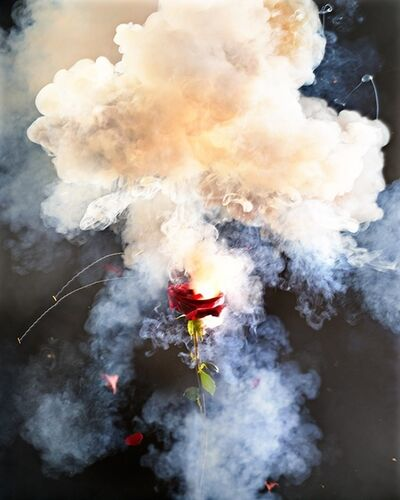 David Drebin, 'Exploding Rose', 2013