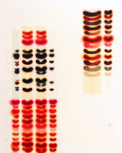 Jaq Chartier, 'Full Spectrum - Reds', 2013