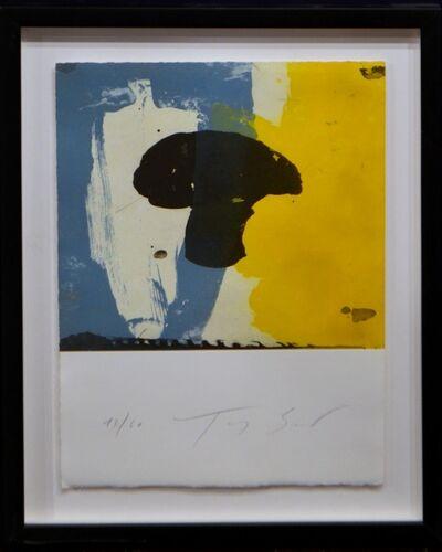 Tony Soulié, 'Colometrie ', 2014