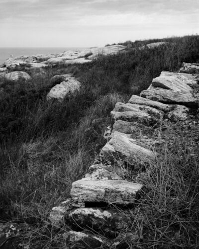 Alexandra de Steiguer, 'Circuit Path Wall, Appledore Island', 2015