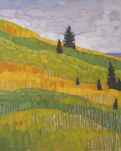 David Grossmann, 'Pine Trees and Autumn Hill Colors', 2019