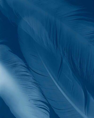 Yumiko Izu, 'Icarus Blue 34', 2017