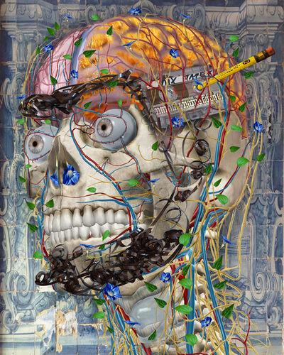 Einar and Jamex de la Torre, 'Transdifferentiation II', 2016